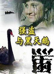 强盗与黑天鹅