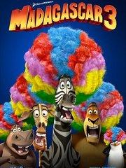 马达加斯加3