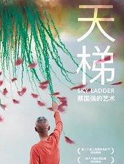 天梯:蔡国强的艺术  预告片1