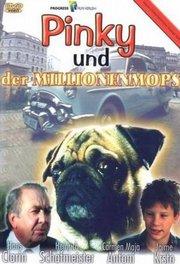 皮基和亿万富狗