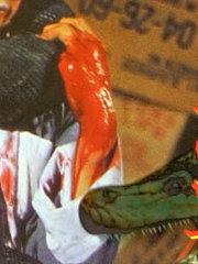 人蛇大战(1982)