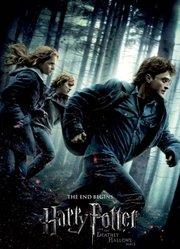 哈利·波特7:哈利·波特与死亡圣器(上)(普通话)