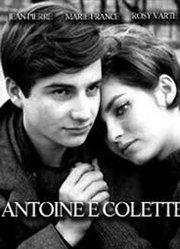 安托万与柯莱特