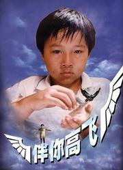伴你高飞1998