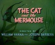 猫与人鱼鼠