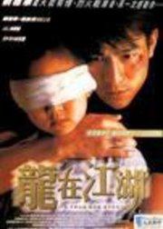 龙在江湖1998版