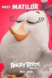 愤怒的小鸟搞笑集锦