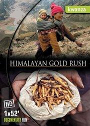 喜马拉雅大淘金