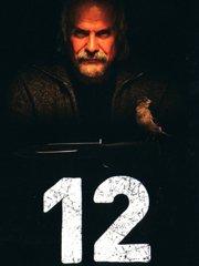 十二怒汉:大审判