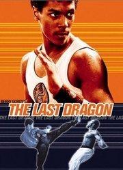 龙拳小子(1985)