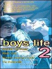男孩的生活2
