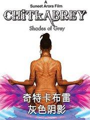 奇特卡布雷-灰色阴影