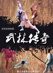 武林传奇(2016)