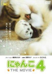 猫咪物语4
