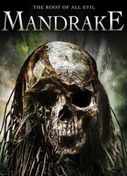 曼陀罗(2010)