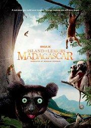 马达加斯加:狐猴之岛
