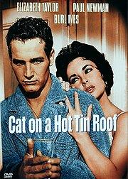 热铁皮屋顶上的猫