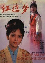 红楼梦1(上)