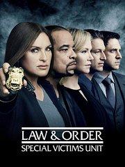 法律与秩序:特殊受害者