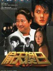 偷天换日(2005)