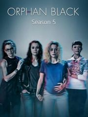 黑色孤儿第5季