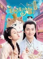 报告王爷,王妃是只猫第1季