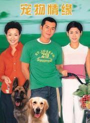 宠物情缘-普通话版