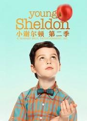 小谢尔顿第2季