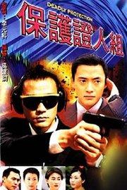 保护证人组粤语版