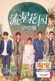 流星花园DVD版