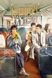 向阳而生DVD版