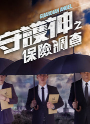 守护神之保险调查粤语