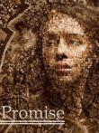诺言(The Promise)