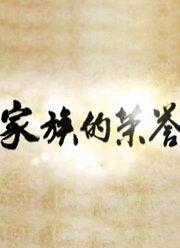 家族荣誉(2013)