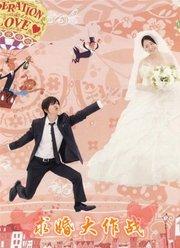 求婚大作战-日剧版