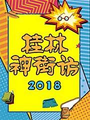神街访 2018