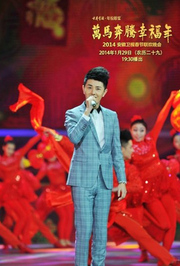 2014安徽卫视春节晚会