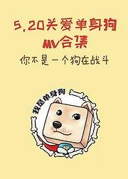 520-关爱单身狗