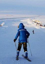 企鹅冬日生活季
