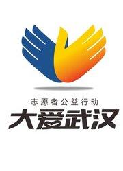 2015大爱武汉志愿者公益行动