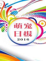 萌宠日报 2016