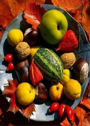 141001健康之路:秋季鲜果也治病(下)