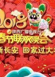2018陕西广播电视台春节联欢晚会