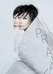 林忆莲PRANAVA中国巡回演唱会