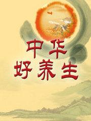 中华好养生  2013