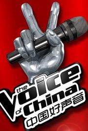 中国好声音第3季 第12期