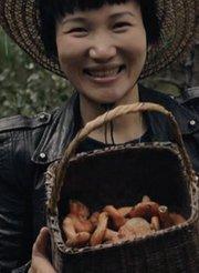 美豆旅食家