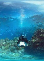 汉密尔顿岛全景游览(VR)