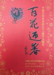 中国文学艺术界2017春节大联欢