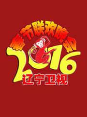 2016辽宁卫视小年夜